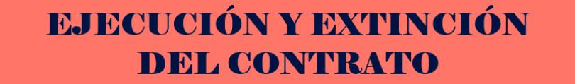 Ejecución del contrato público